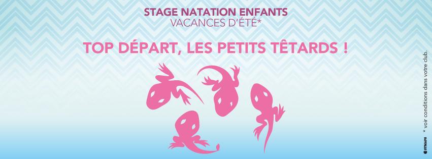 Stages de natation (vacances d'été), top départ les petits têtards !